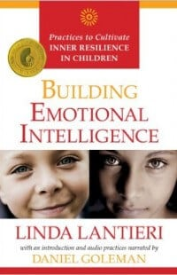 building-emotional-intelligence