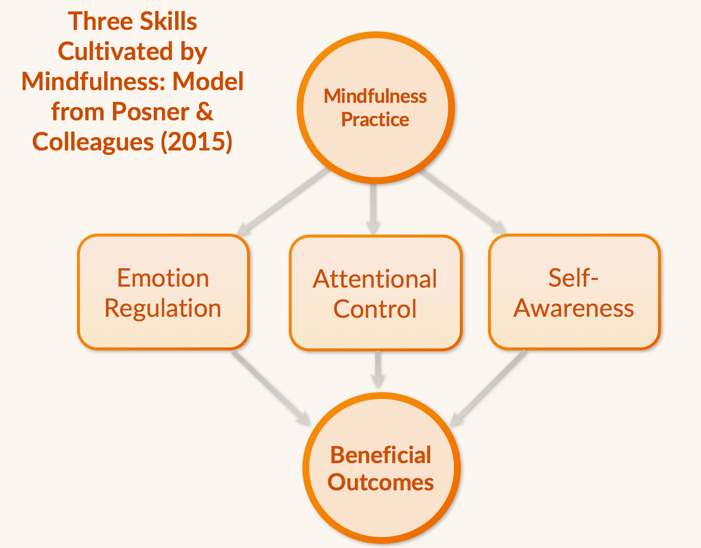 Mindfulness Skills